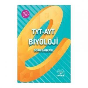 TYTAYT BY