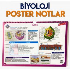 biyolo018-12-17 at 10.40.01-480x480