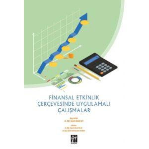 finansal-etkinlik-cercevesi